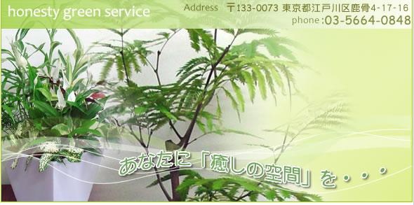 観葉植物レンタル(グリーンレンタル)東京都